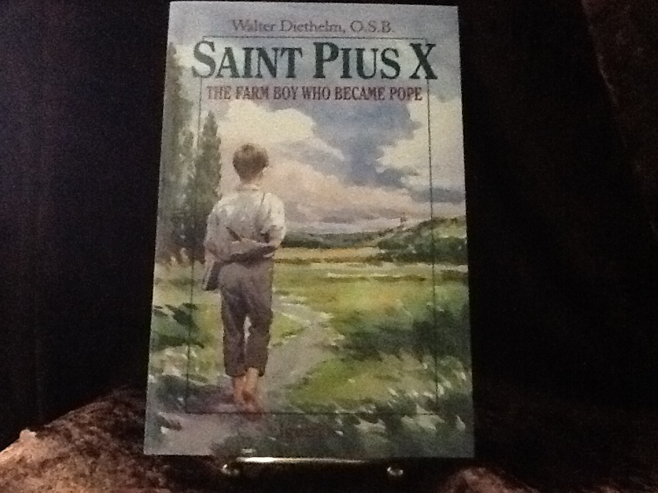 Saint Pius X: The Farm Boy Who Became Pope